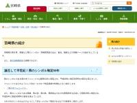 Screenshot of www.pref.miyazaki.lg.jp