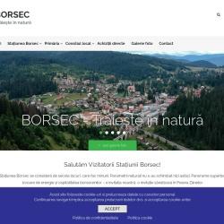 http://www.primaria-borsec.ro/