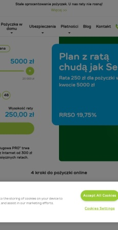 Screenshot of www.provident.pl
