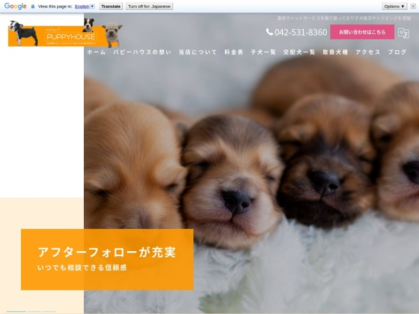 Screenshot of www.puppyhouse.jp