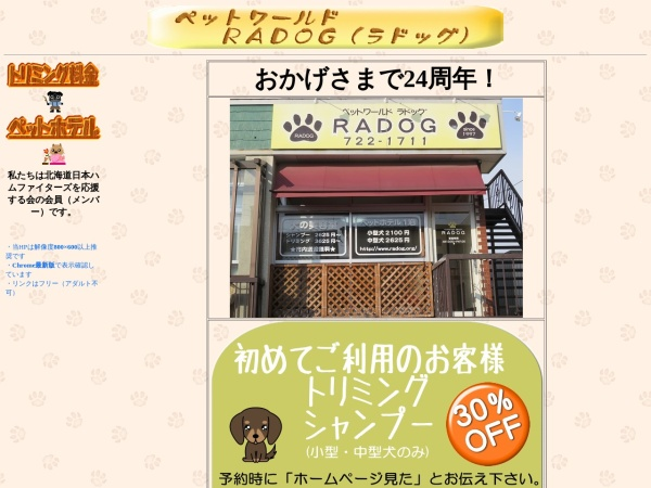 Screenshot of www.radog.jp