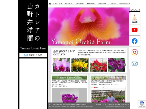 Screenshot of www.ran-yamanoi.com