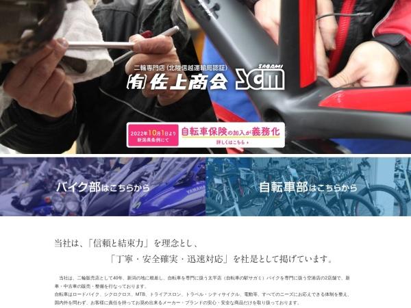 Screenshot of www.sagaminet.com
