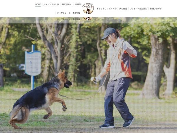 Screenshot of www.saint-fuji.jp