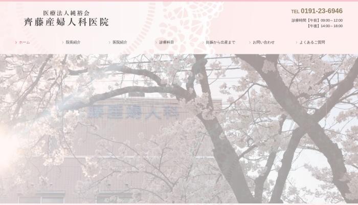 Screenshot of www.saito-obgyne.jp