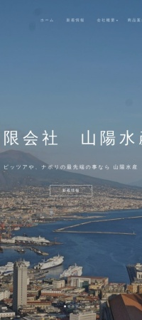Screenshot of www.sanyo-suisan.com