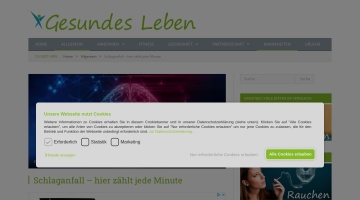 Screenshot of www.schlaganfall-info.at