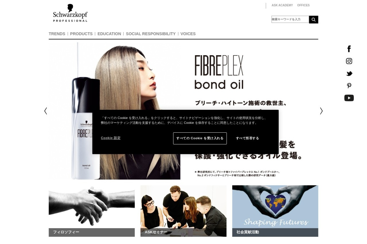 http://www.schwarzkopf-professional.jp/skp/jp/jp/home.html