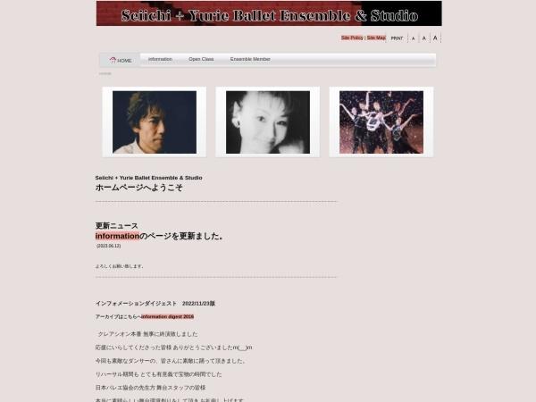 Screenshot of www.seiichi-yurie.com