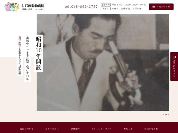Screenshot of www.sejima.net