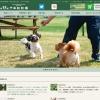Screenshot of www.senbonmatsu.com