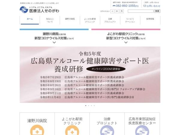Screenshot of www.senoriver.com