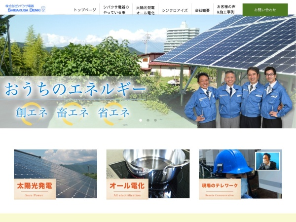 Screenshot of www.shibakusadenki.com