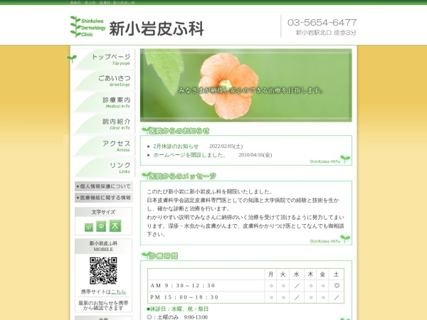 Screenshot of www.shinkoiwa-hifu.com