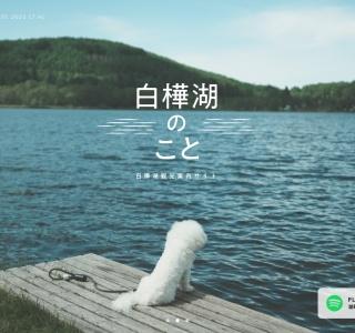 Screenshot of www.shirakabako.com