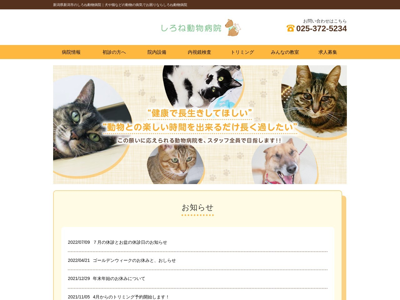 Screenshot of www.shirone.jp