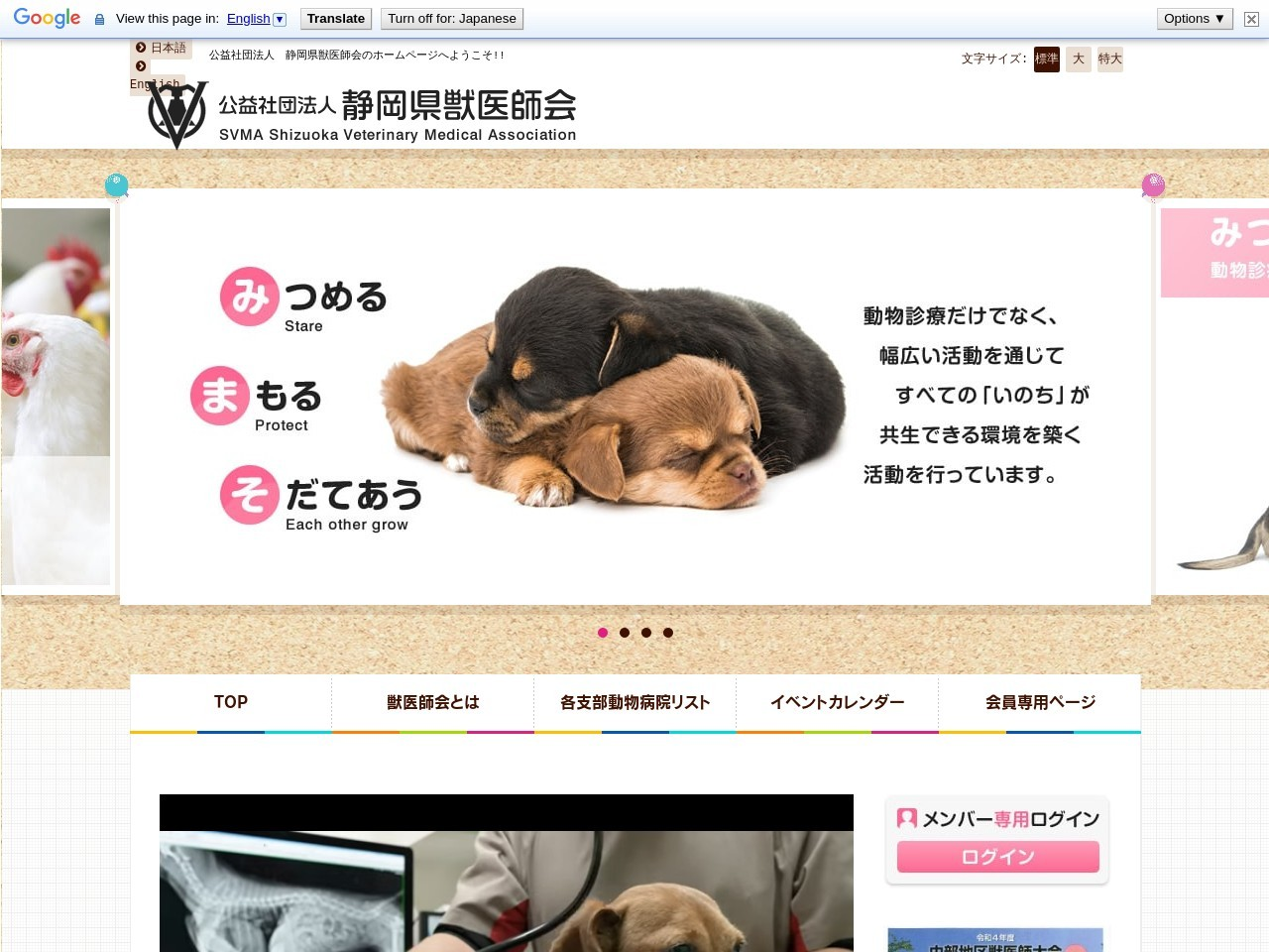 Screenshot of www.shizujyu.com