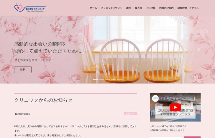 Screenshot of www.snwomen.net