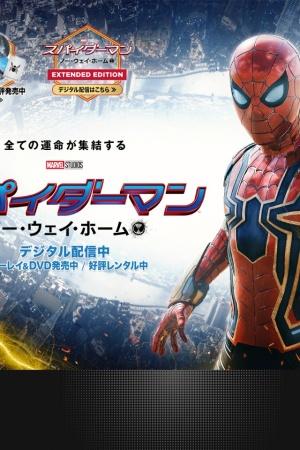 Screenshot of www.spiderman-movie.jp