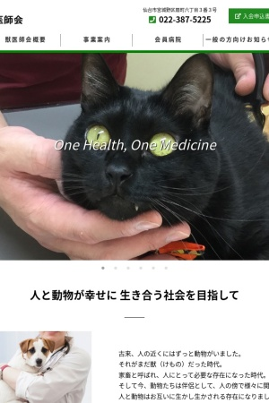 Screenshot of www.svma.or.jp