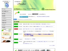 Screenshot of www.swallow-web.com