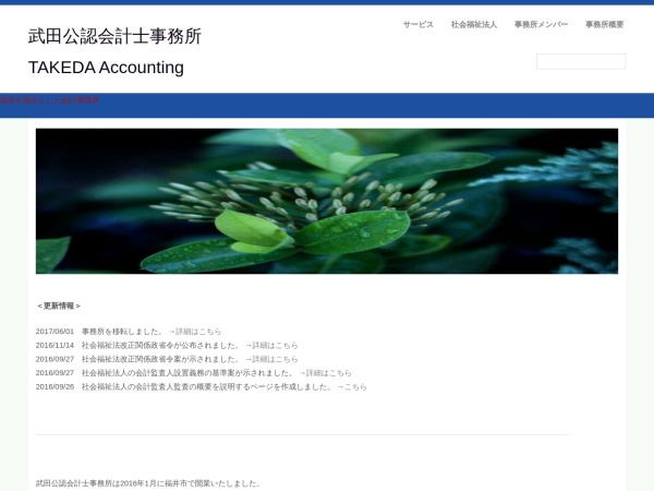 Screenshot of www.takeda-accounting.com