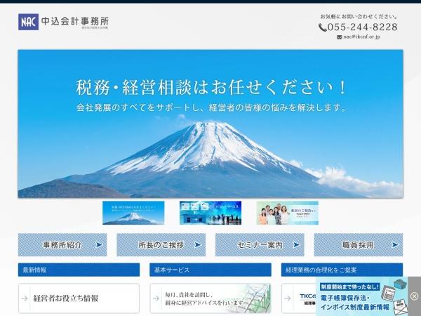 Screenshot of www.taxnac.com