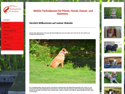 tierheilpraxis-einig.de