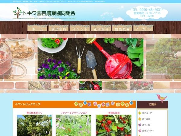 http://www.tokiwa-web.com