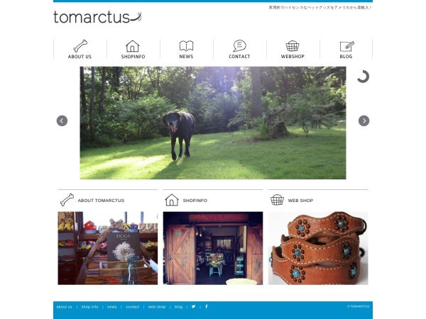 Screenshot of www.tomarctus.net