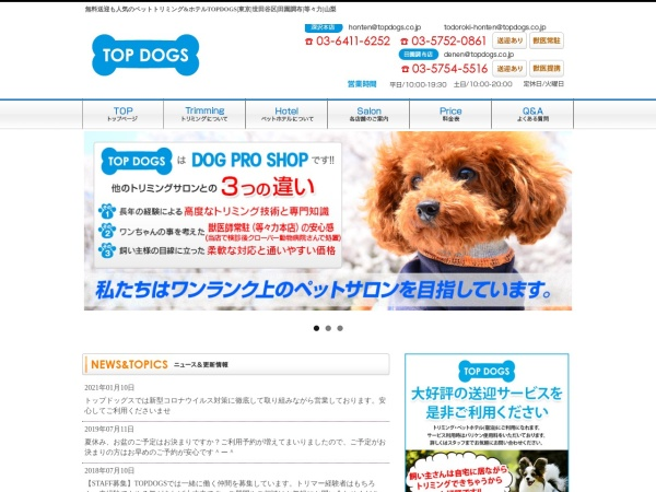 Screenshot of www.topdogs.co.jp