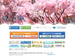 http://www.town.ainan.ehime.jp/