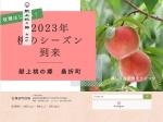 http://www.town.koori.fukushima.jp/