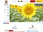 Screenshot of www.town.mashiko.tochigi.jp