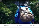 Screenshot of www.town.otoyo.kochi.jp