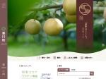 http://www.town.samukawa.kanagawa.jp/