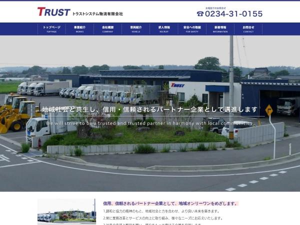 Screenshot of www.trust310155.com
