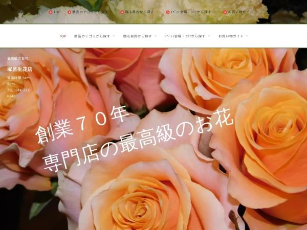 Screenshot of www.tsukahara-seikaten.co.jp