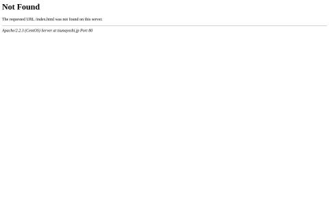 Screenshot of www.tsunayoshi.jp