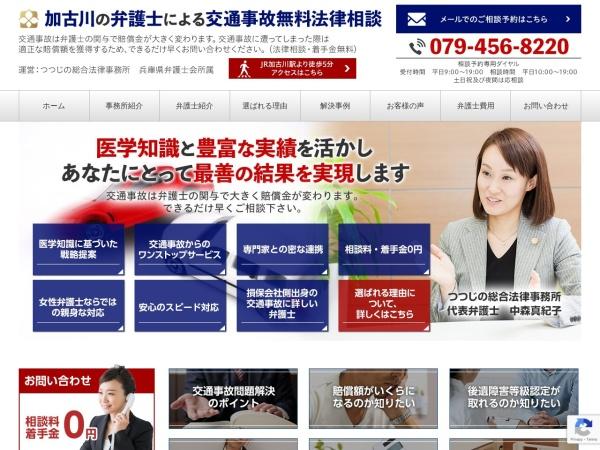 Screenshot of www.tsutsujino-kotsujiko.com