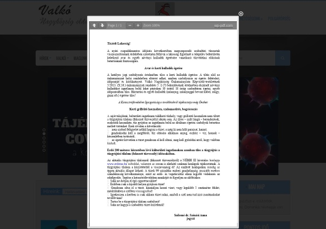 Screenshot of www.valko.hu