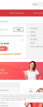 Screenshot of www.viasms.pl