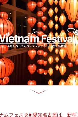 Screenshot of www.vietnamfesta.com