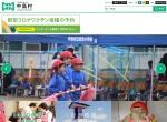 Screenshot of www.vill-nakajima.jp