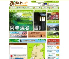 Screenshot of www.vill.ookuwa.nagano.jp