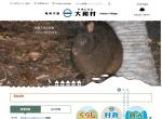 Screenshot of www.vill.yamato.lg.jp