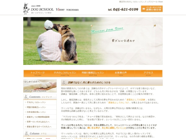 Screenshot of www.visse.co.jp