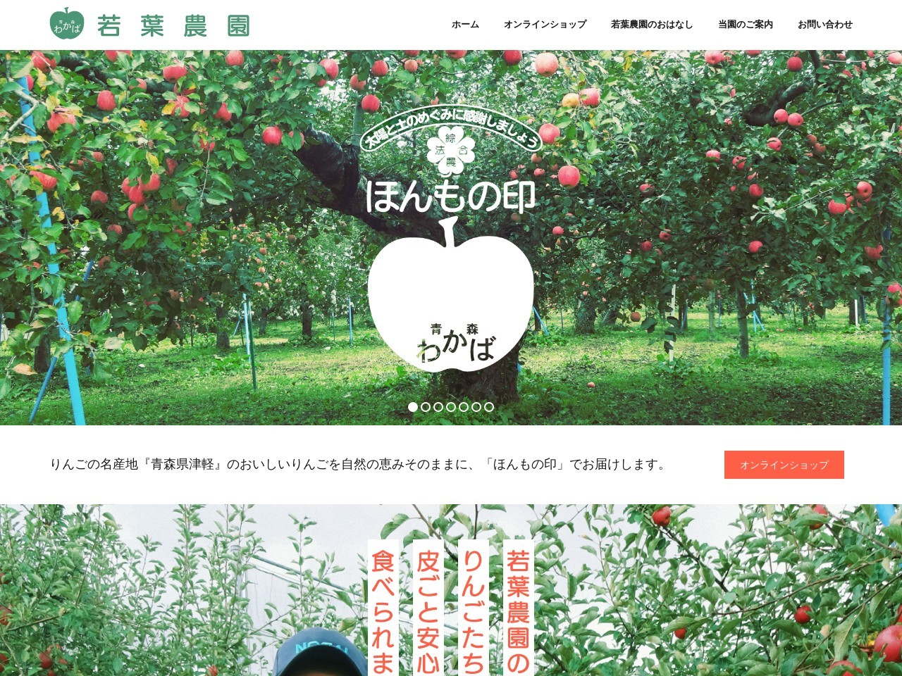 青森県西津軽郡より皮ごと食べられるりんご、無添加のりんごジュースをお届け|若葉農園