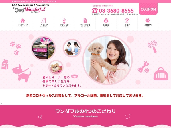 Screenshot of www.wanderful.jp