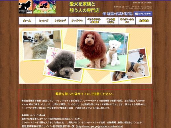 Screenshot of www.wonderrun.com